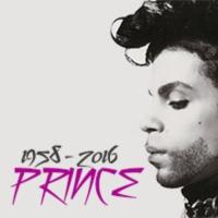 Logo de la radio Prince laut.fm