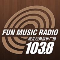 Logo of radio station 湖北经典音乐广播 - Hubei classical music radio
