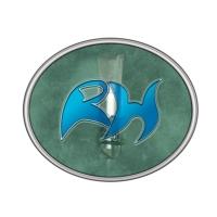 Logo de la radio Radio Halsnæs