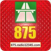 Logo of radio station 875 Naoned