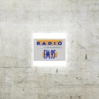 Logo of radio station FM95