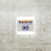 Logo of radio station FM95