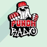 Logo of radio station Punch-Radio
