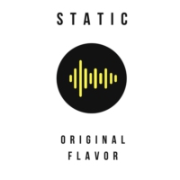 Logo of radio station Static: Original Flavor