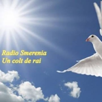 Logo of radio station Radio Smerenia