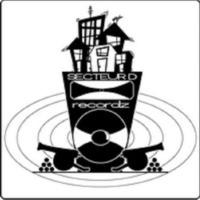 Logo of radio station Secteur D Radio
