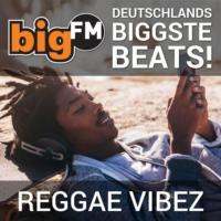 Logo of radio station bigFM Reggae Vibez