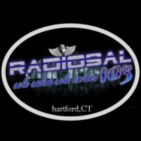 Logo of radio station RADIOSAL103