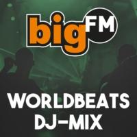 Logo de la radio bigFM - Worldbeat