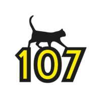 Logo de la radio Black Cat 107