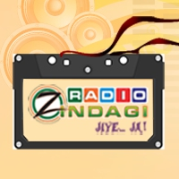 Logo of radio station WCTN Radio Zindagi 950