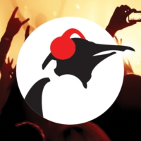 Logo de la radio Pinguin On The Rocks
