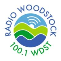 Logo of radio station 100.1 WDST