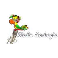 Logo of radio station Barbagia 91.9 FM