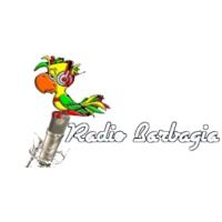 Logo de la radio Barbagia 91.9 FM