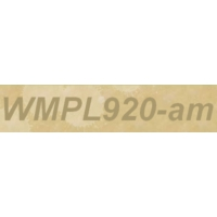 Logo of radio station WMPL 920