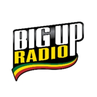Logo of radio station BigUp Radio - Skankin' Ska