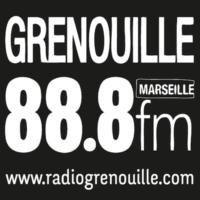 Logo de la radio Radio Grenouille 88.8 FM