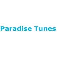 Logo of radio station Paradise Tunes