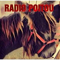 Logo de la radio Radio Poitou