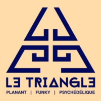 Logo of radio station Radio Le Triangle
