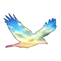 Logo de la radio Fly Paradise