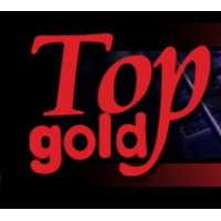 Logo of radio station Top Gold Albania