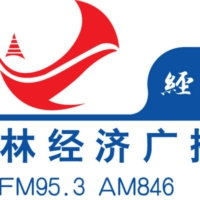 Logo of radio station 吉林经济广播FM95.3 - Jilin radio FM95.3