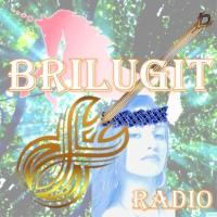 Logo of radio station BriLuGit Radio