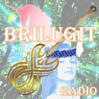 Logo of radio station BriLuGit Radio