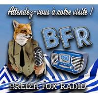 Logo de la radio Breizh Fox Radio