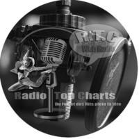 Logo de la radio Radio Top Charts