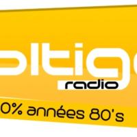 Logo of radio station VOLTIGE RADIO 80'S