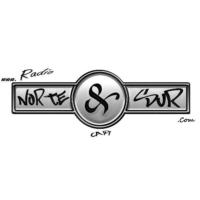 Logo of radio station Radio Norte y Sur