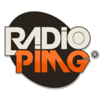 Logo of radio station PİMG RADİO