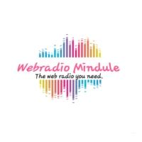 Logo de la radio Webradio Mindule