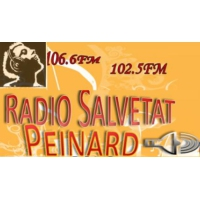 Logo of radio station Radio Salvetat Peinard