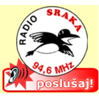 Logo of radio station Radio Sraka International