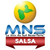 Logo de la radio MNS Salsa