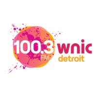 Logo of radio station 100.3 WNIC