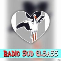 Logo of radio station RADIO-SUD-ELSASS