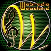 Logo de la radio WebRadio Waasland