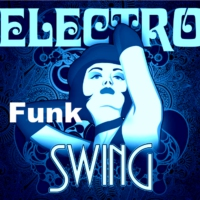 Logo of radio station Digital Impulse Electro Funk & Swing