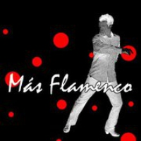 Logo of radio station Mas Flamenco Radio