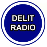 Logo of radio station Delit Radio France