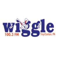 Logo of radio station WHGL Wiggle 100