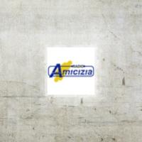 Logo of radio station Radio Amicizia 100.8 FM