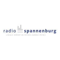 Logo of radio station Radio Spannenburg