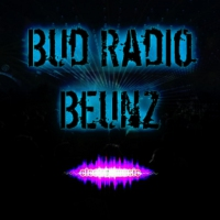 Logo of radio station Bud Radio Beunz