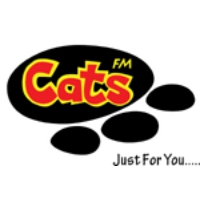 Logo of radio station Cats FM 99.3